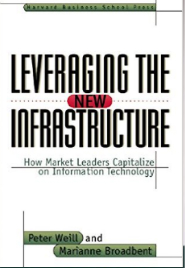 leveraging-the-infrastructure